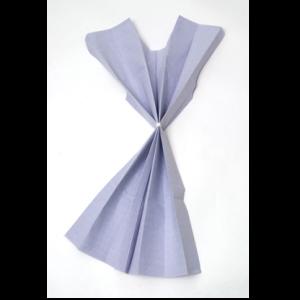 Avalon Exam Gowns 300x300 - Avalon-Exam-Gowns