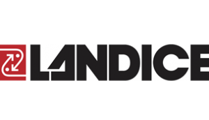 landice 300x172 - landice